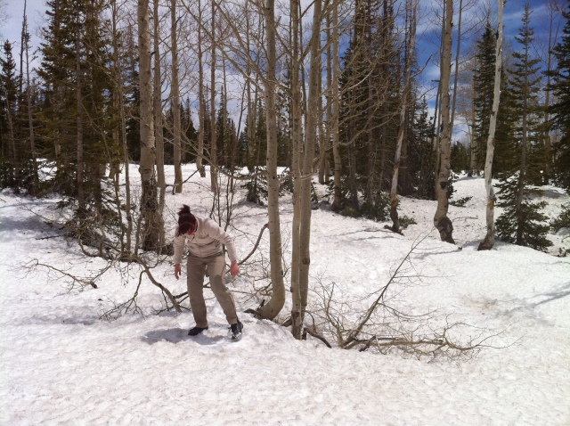 Cachen im Schnee