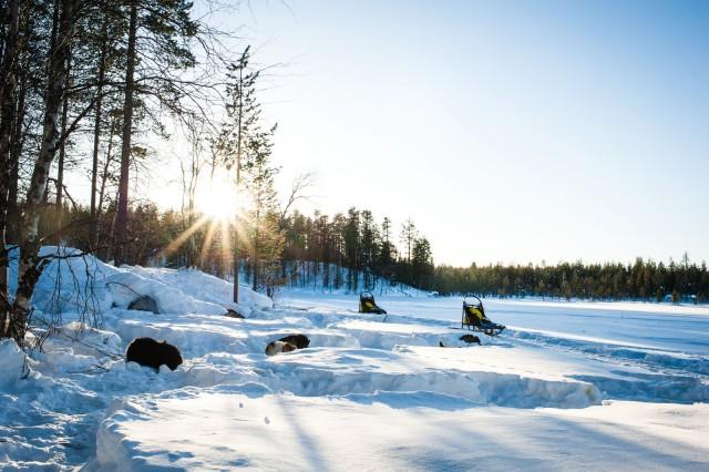 Finland_Lapland_Hut_Mushing-2513