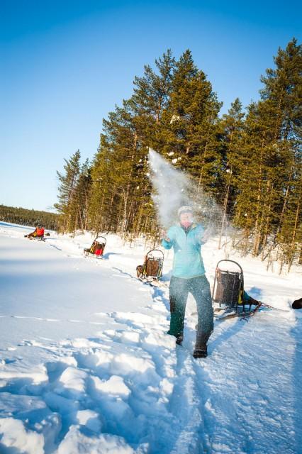 Finland_Lapland_Hut_Mushing-2524