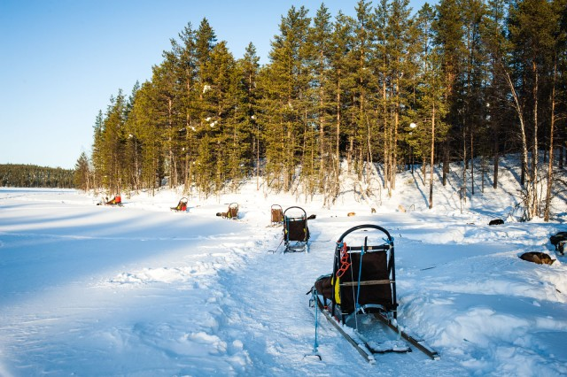 Finland_Lapland_Hut_Mushing-2529