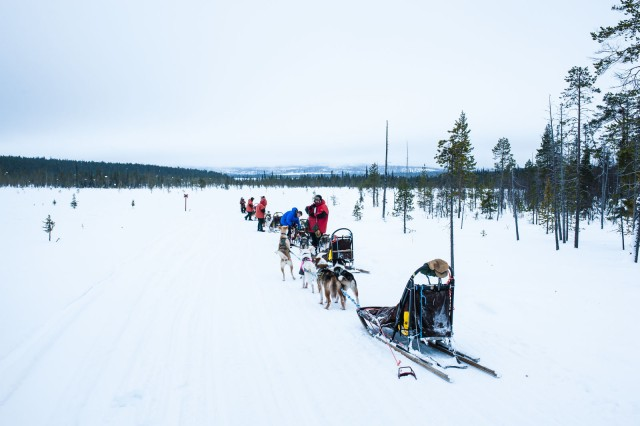 Finland_Lapland_Hut_Mushing-2595