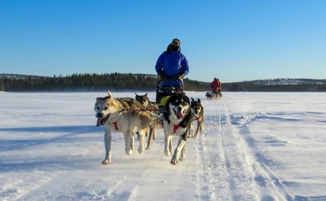 Finland_Lapland_Hut_Mushing-Edgar1