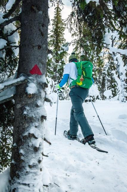 finland_lapland_snowshoe_linkukero_hiking-2713