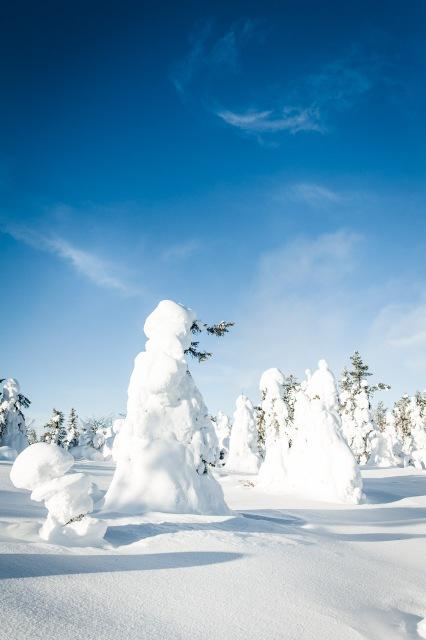 finland_lapland_snowshoe_linkukero_hiking-2801