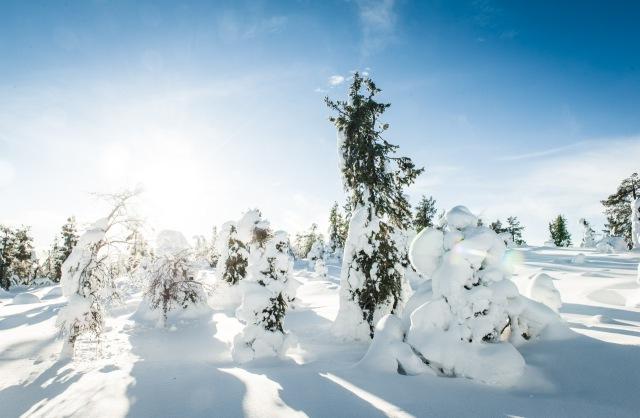 finland_lapland_snowshoe_linkukero_hiking-2813