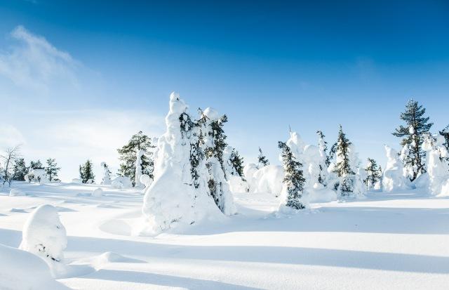 finland_lapland_snowshoe_linkukero_hiking-2824