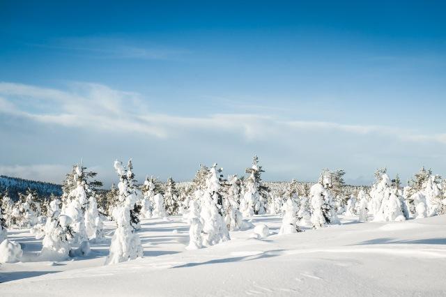 finland_lapland_snowshoe_linkukero_hiking-2845