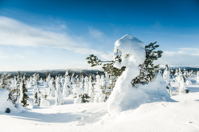 finland_lapland_snowshoe_linkukero_hiking-2855