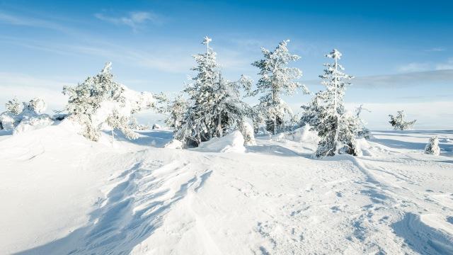 finland_lapland_snowshoe_linkukero_hiking-2868