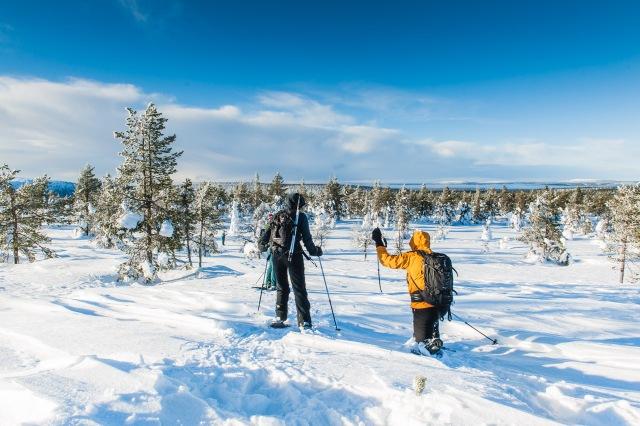 finland_lapland_snowshoe_linkukero_hiking-2982