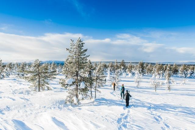 finland_lapland_snowshoe_linkukero_hiking-2989