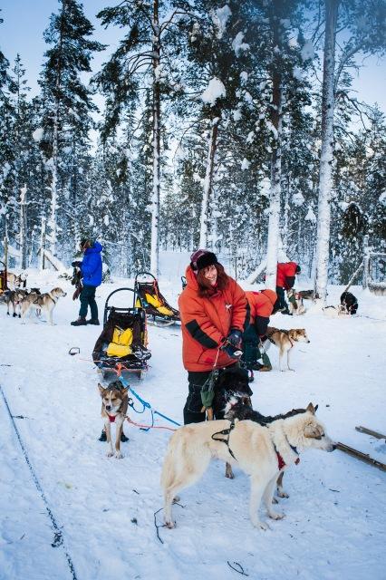 finnland-lappland-2081