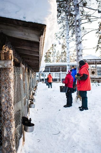 finnland-lappland-2144