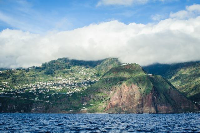 madeira_whalewatching_calheta_lobosonda-6383