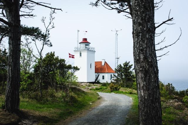 bornholm_dk-7784